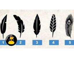 ¿Qué pluma prefieres? ¡ La pluma que eliges dice mucho sobre tu personalidad!